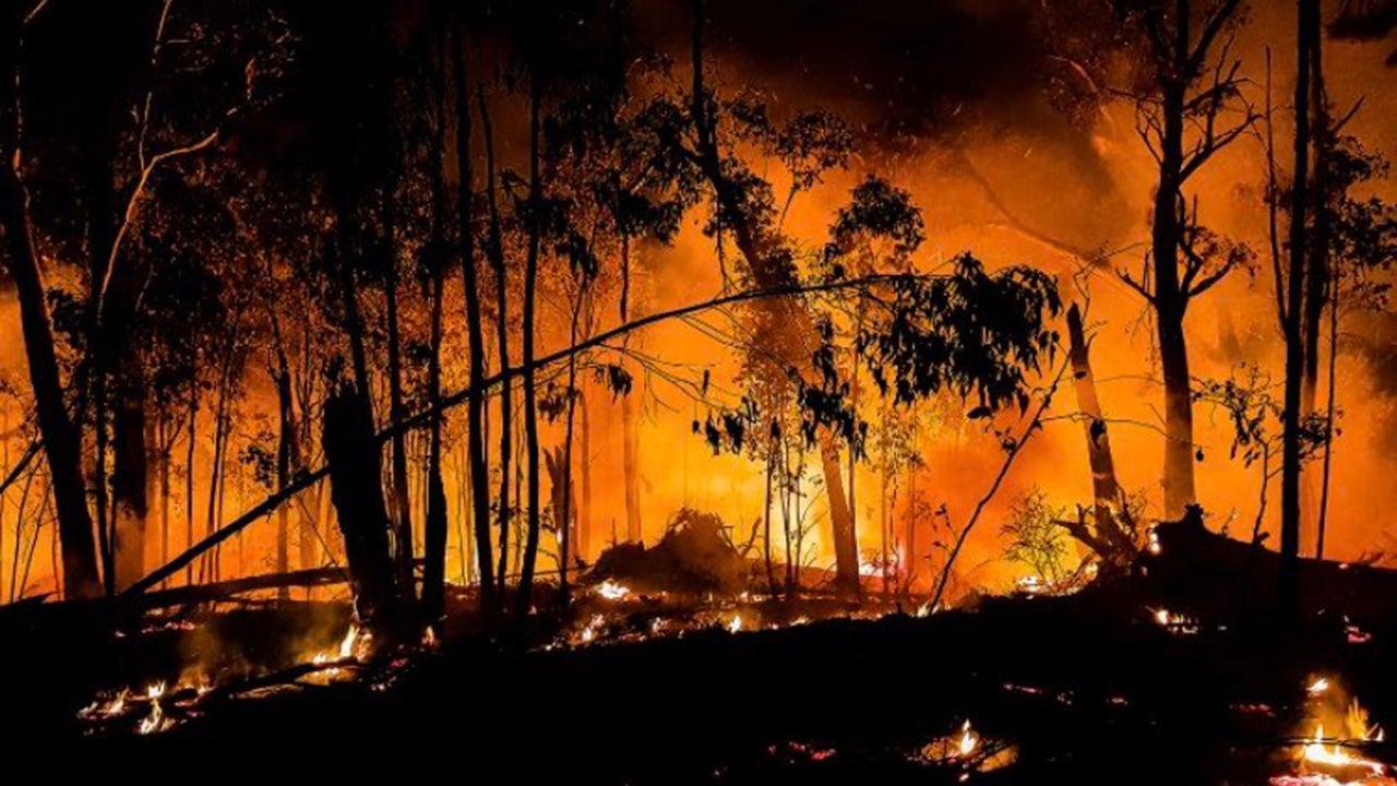 Katastrofalni požar u Australiji - Page 4 VictoriaFires