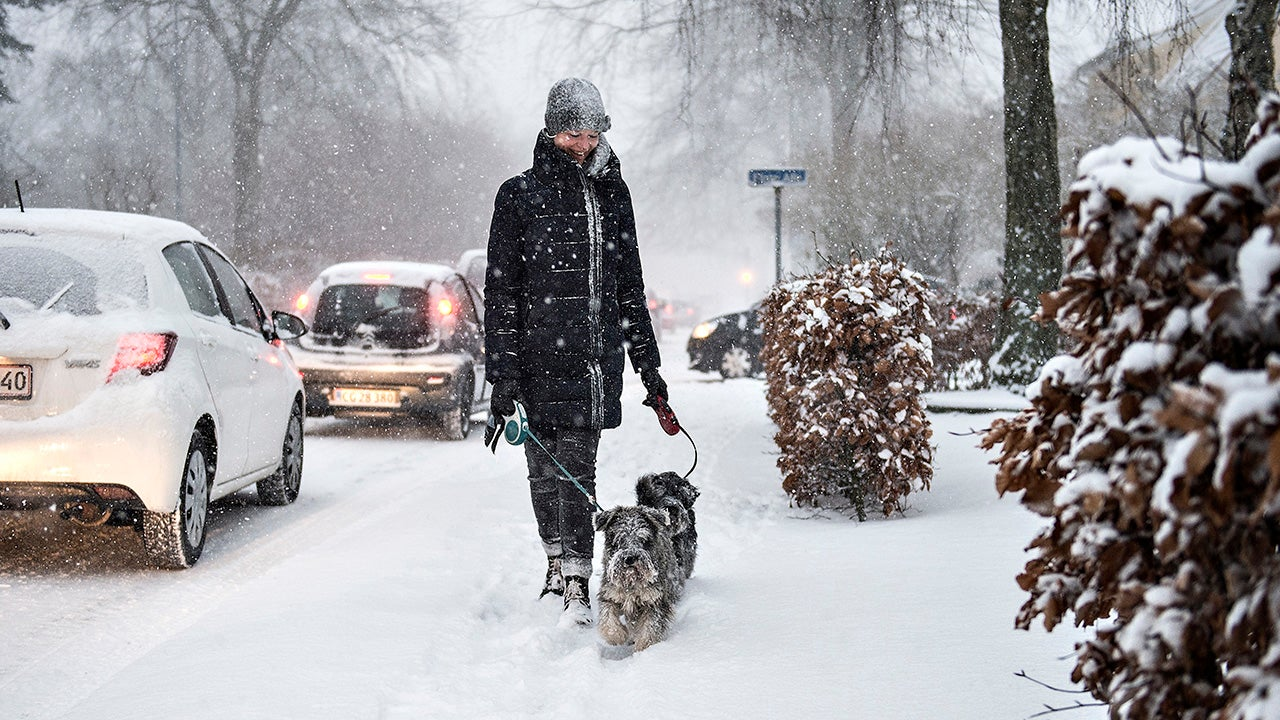 'Beast from the East': Siberian blast coats much of Europe in snow and ice (PHOTOS)