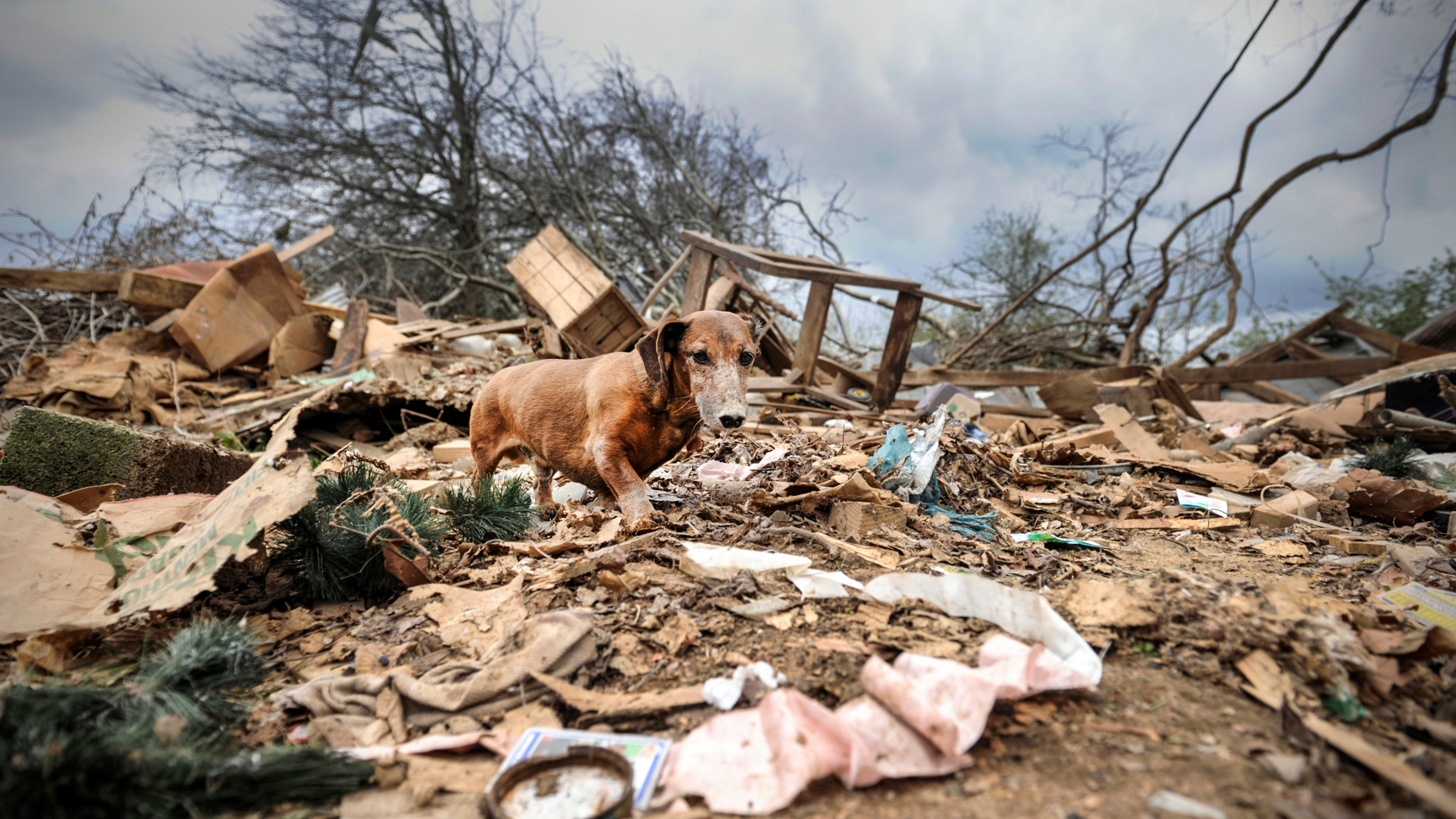 Photos: Severe Storms, Tornadoes Leave Widespread Damage in US South