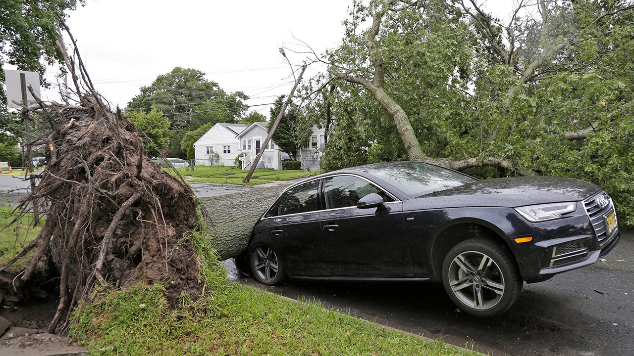 Downed Trees, Flooding and Power Outages for Thousands After Severe Storms Hit East Coast (PHOTOS)