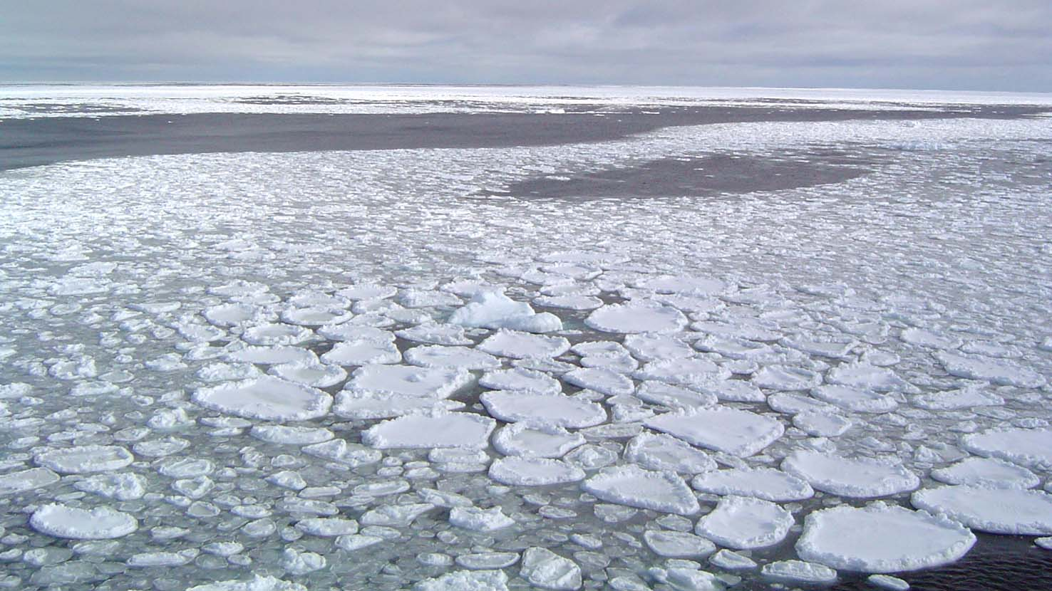 Arctic Ice Melting at Near-Record June Rate as Summer Approaches