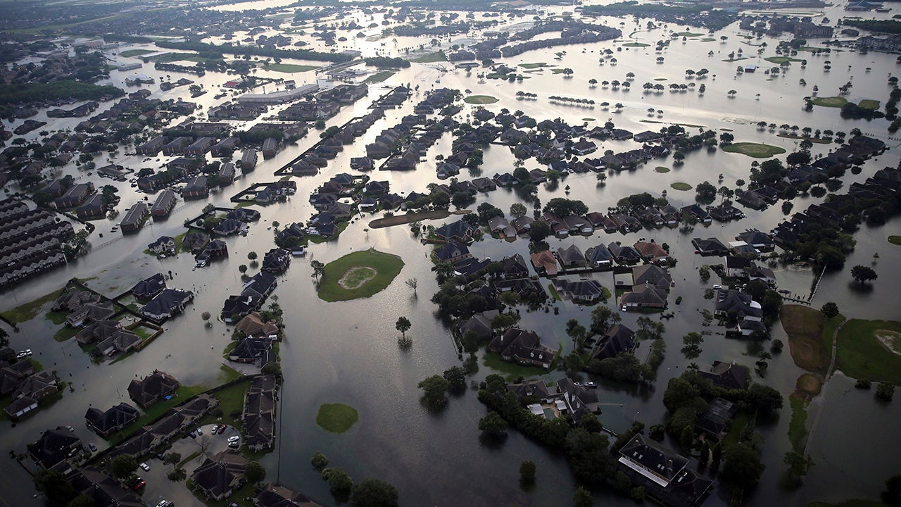 environmental effects of hurricane katrina Hurricane katrina: assessing the present environmental  daily touch with hurricane  i have been asked today to focus on the environmental effects of katrina.