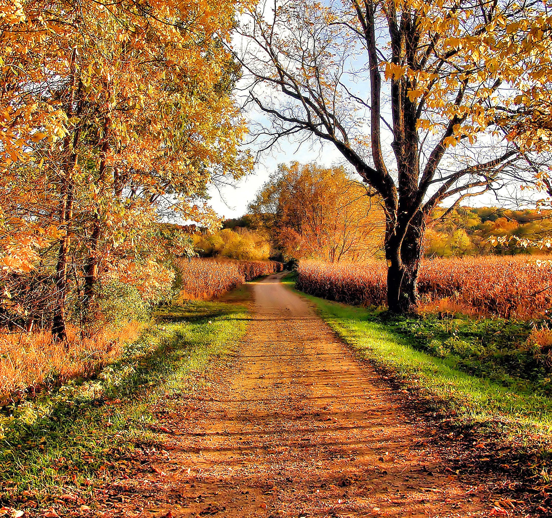 2012's Favorite Fall Drives
