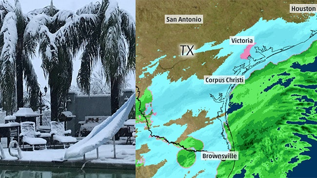 extremely rare south texas snow a first since christmas