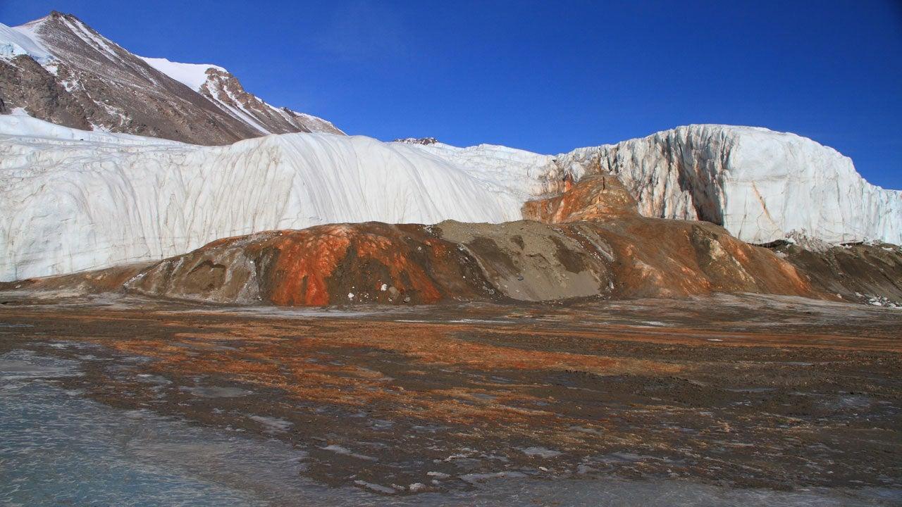 Cataratas de Sangre en la Antártida: misterio de décadas finalmente se resuelve