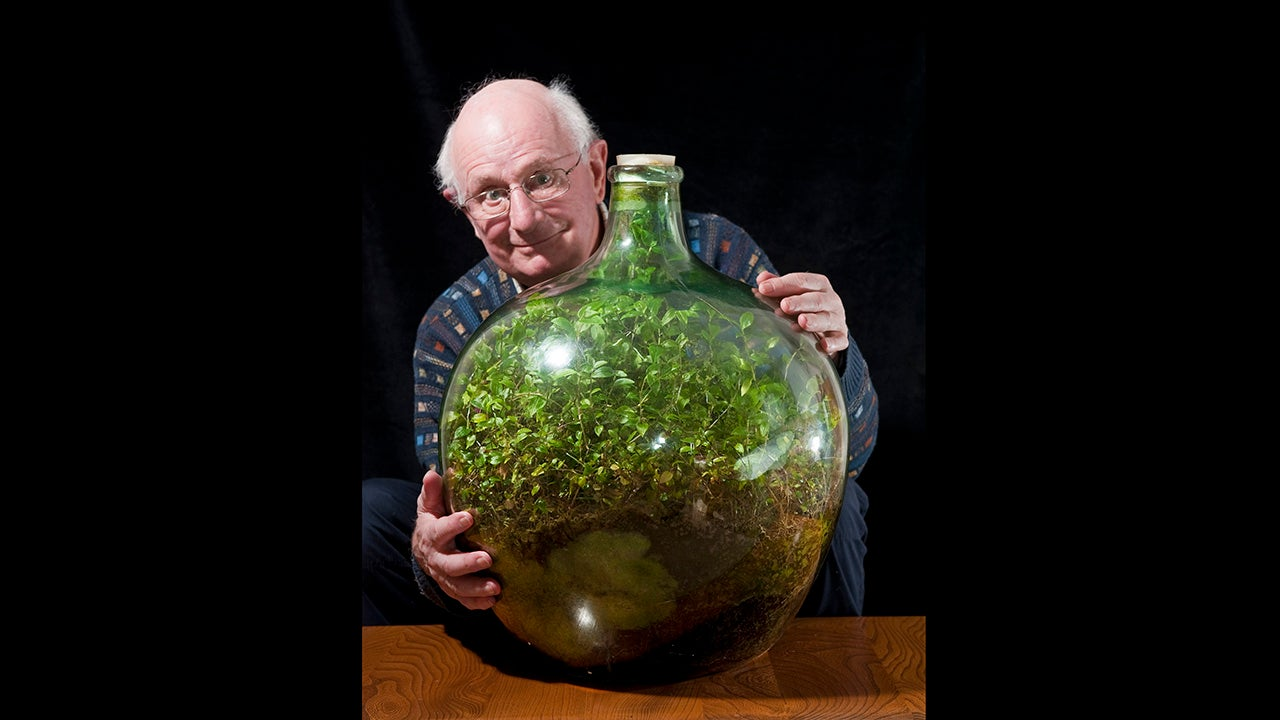 Man S Thriving Garden Sealed In A Bottle Hasn T Been Watered Decades The Weather Channel
