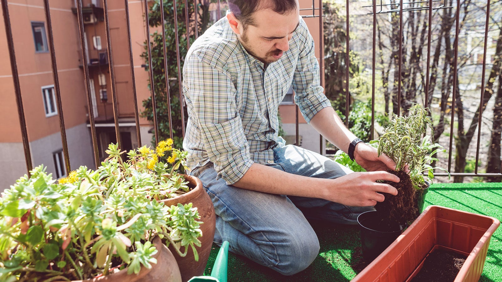 garten im april welche pflanzen jetzt ges t werden d rfen und welche noch nicht. Black Bedroom Furniture Sets. Home Design Ideas