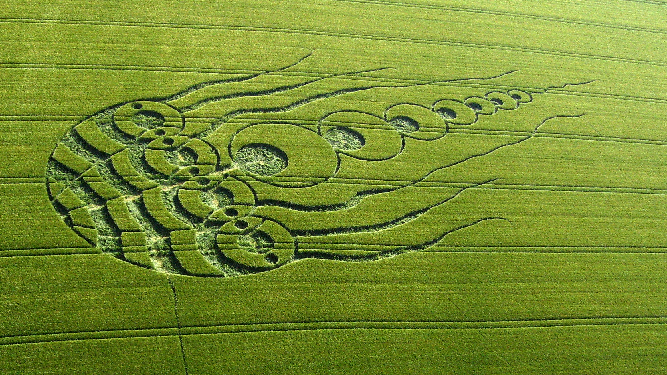 30 Incredible Photos Of Crop Circles