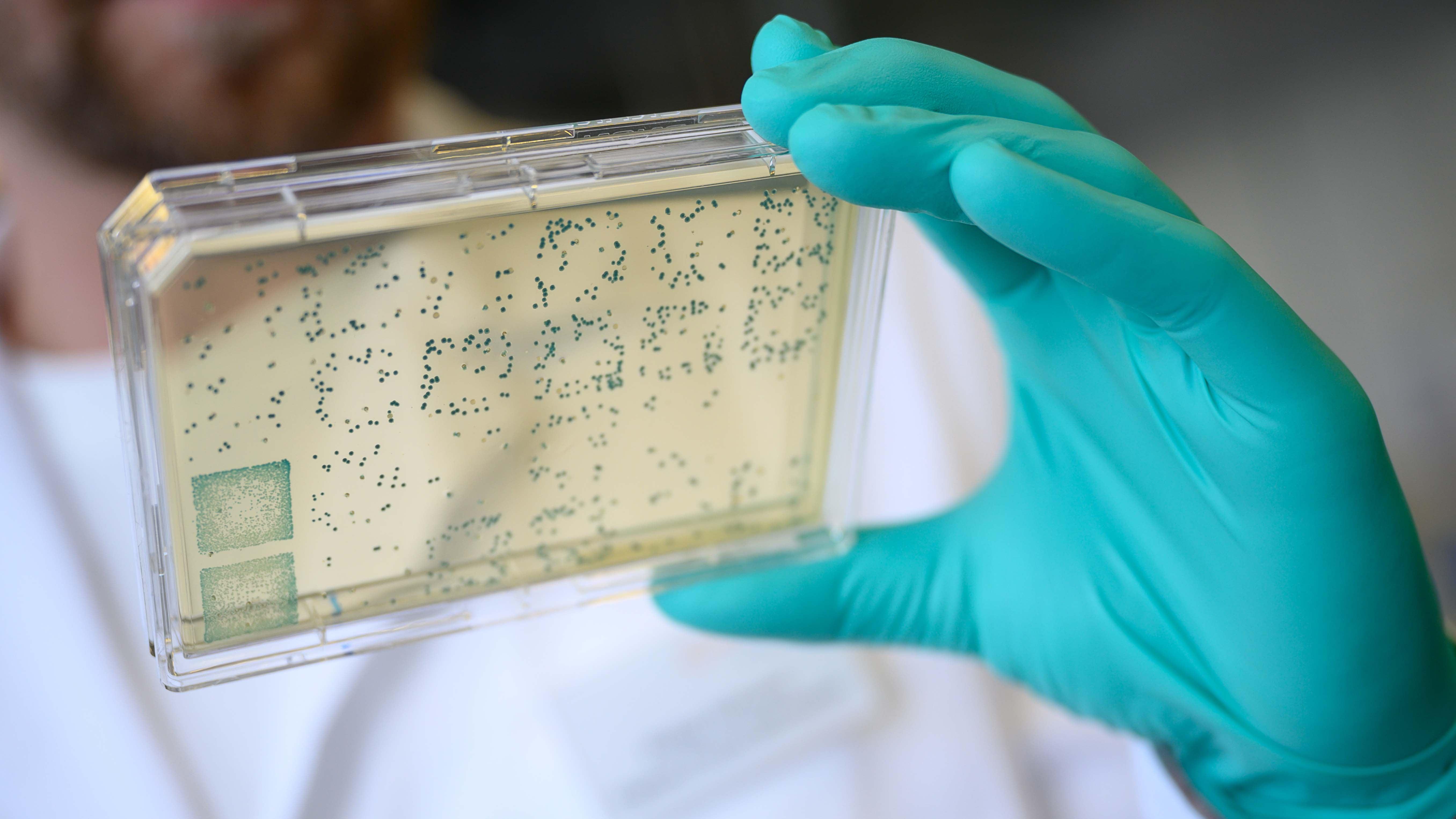 Coronavirus Nrw Ticker
