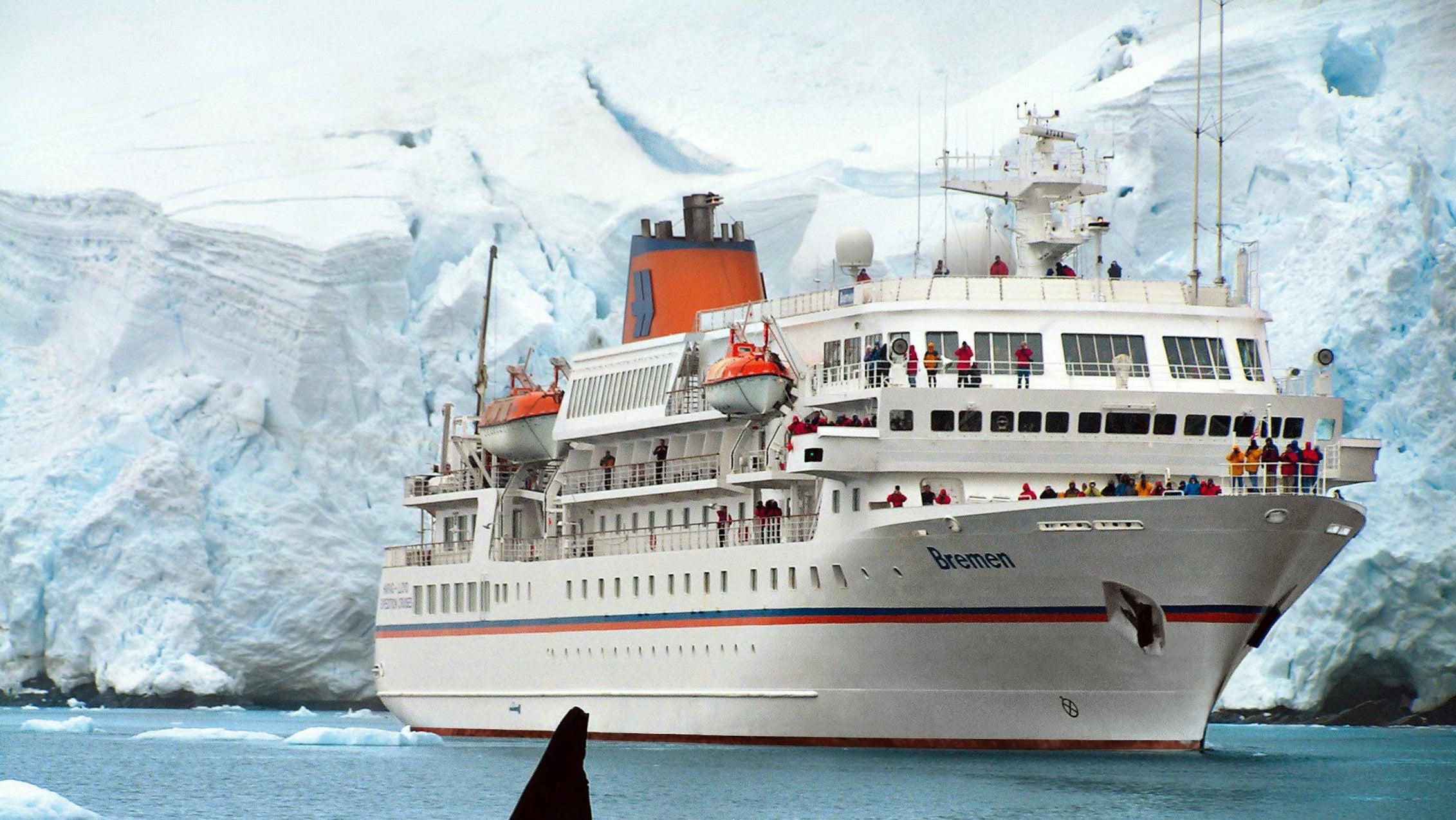 Verletzte deutsches Kreuzfahrtschiff-Crew-Mitglied: Eisbär erschossen