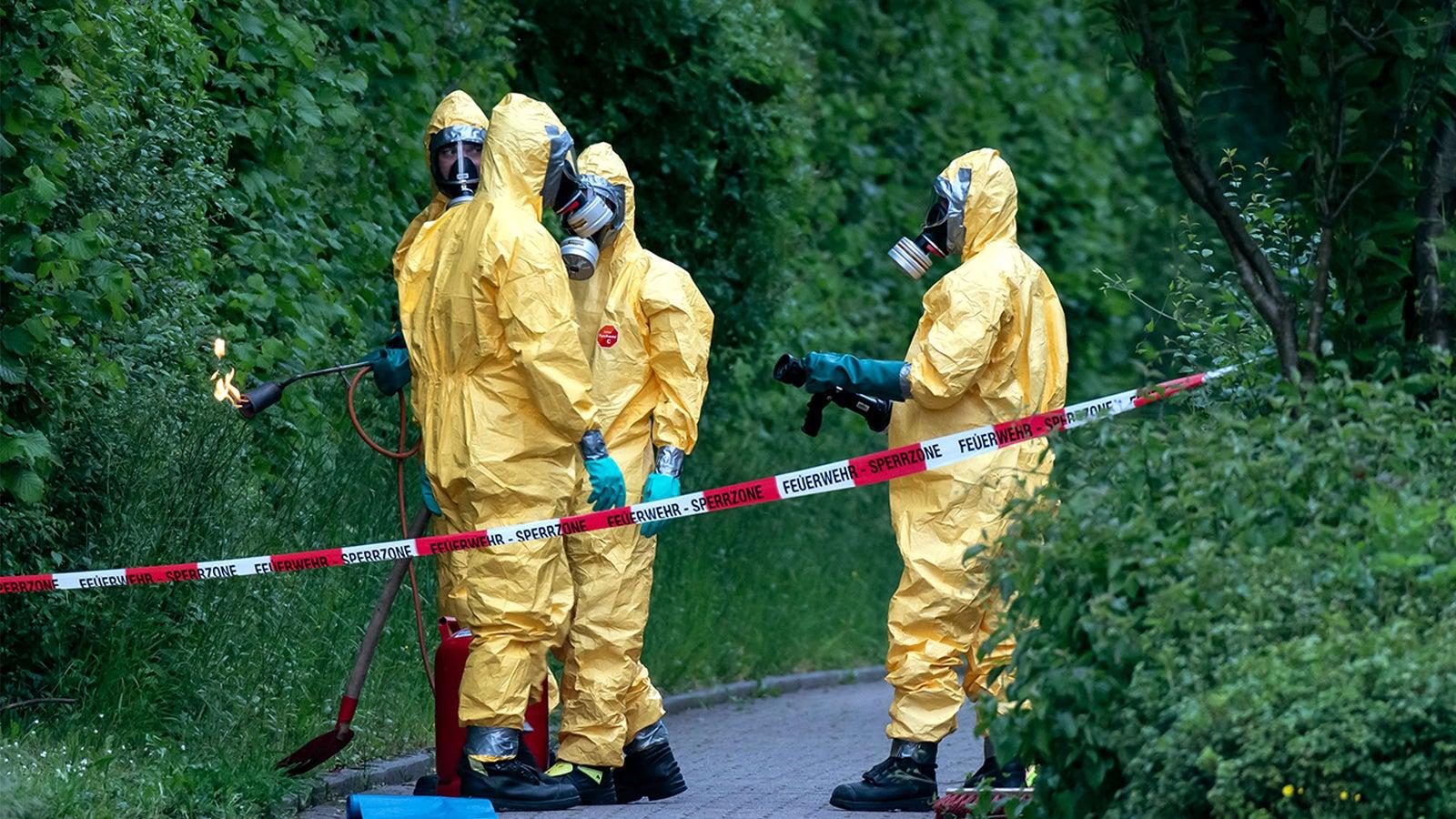 Giftige Eichenprozessionsspinner sorgen für Straßensperre in Iserlohn