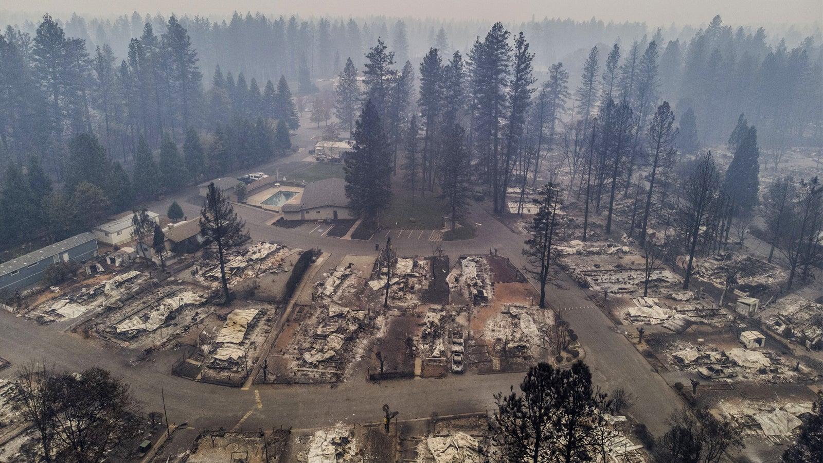 Feuer-Katastrophe in Kalifornien: Zahl der Toten bei Waldbränden steigt auf 50