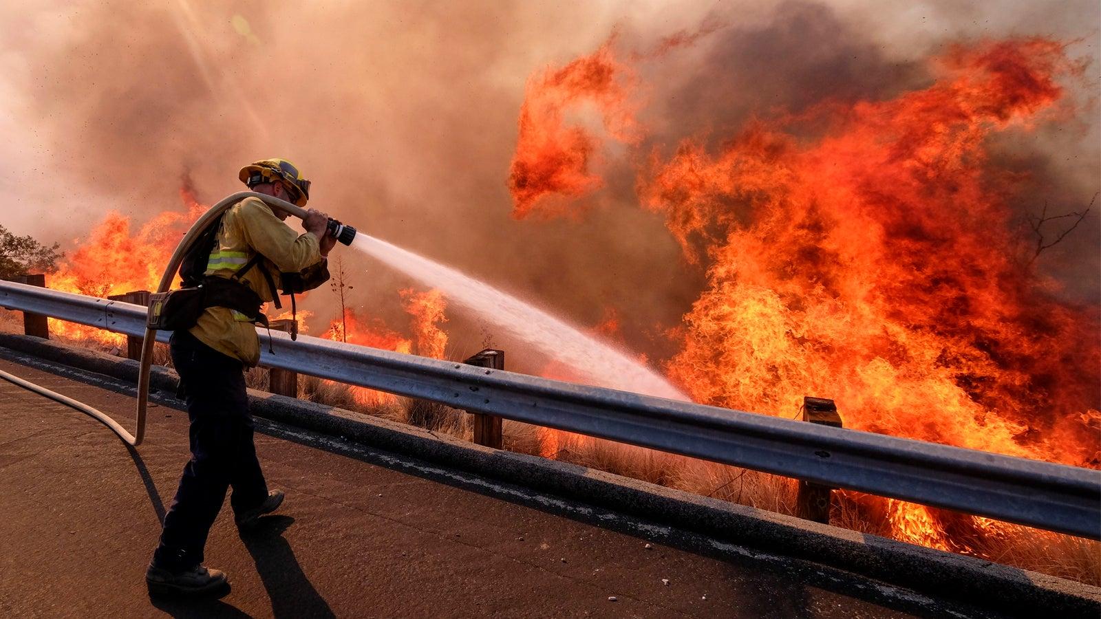 Tödlichster Waldbrand der USA:  Zahl der Opfer in Nordkalifornien steigt auf 42