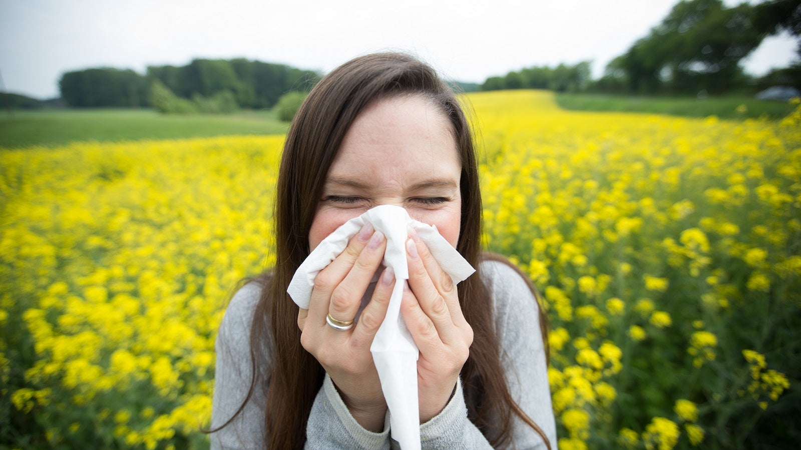 Mildes Wochenende bringt Pollenalarm:  Das blüht Allergikern bald