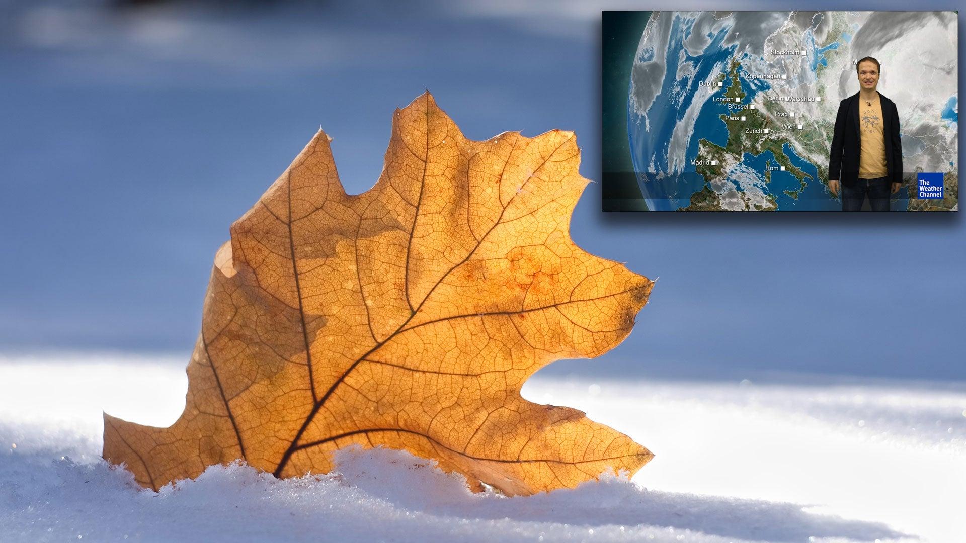 Wintereinbruch am Wochenende - dann ist sogar Schnee möglich