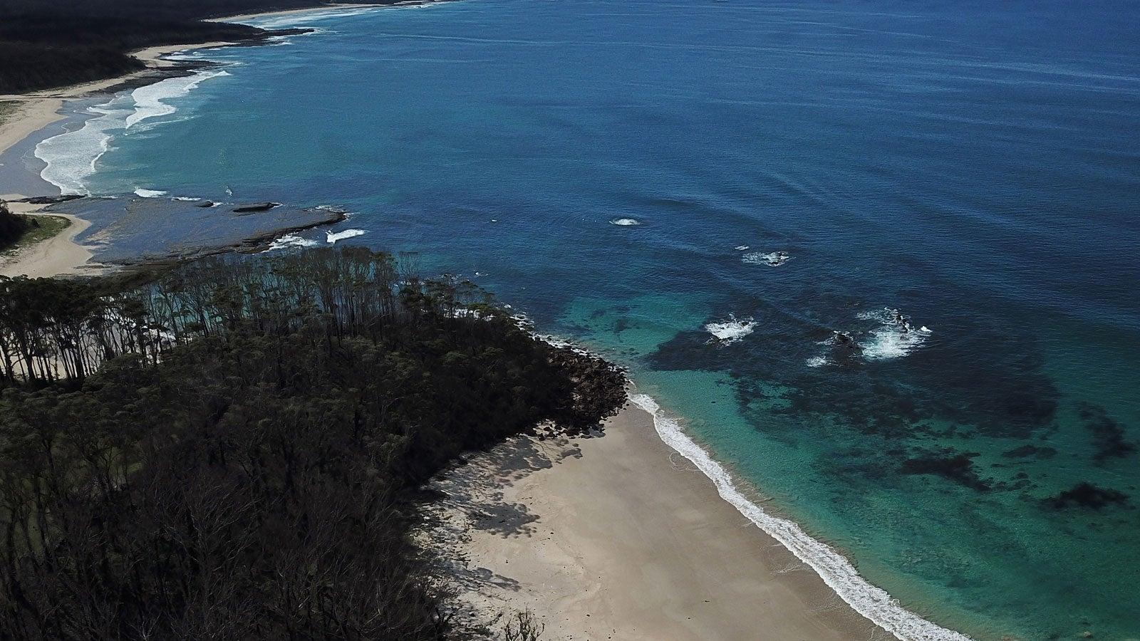Fleischfressende Schwämme: Forscher finden Verblüffendes vor Küste Australiens