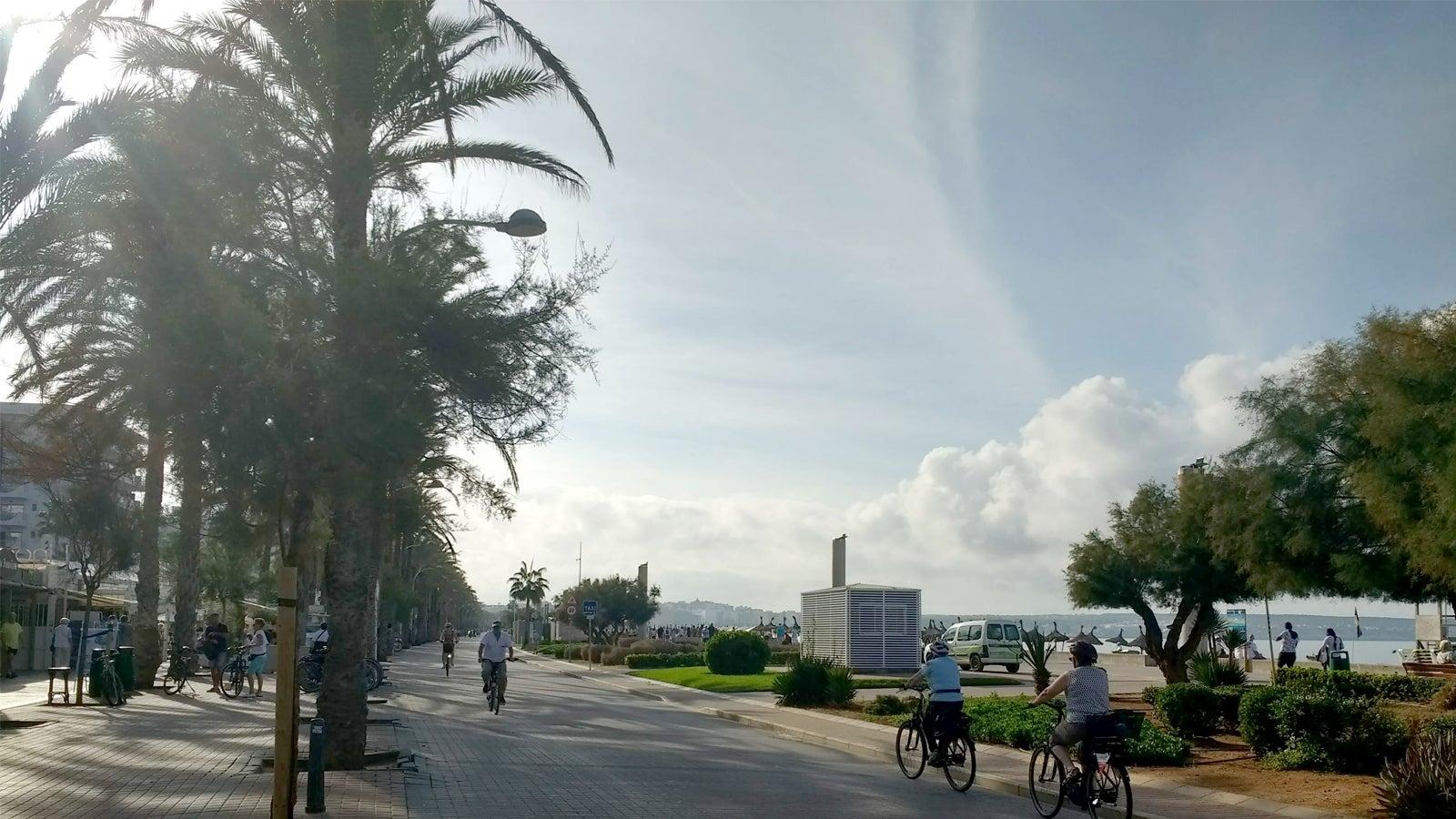 Flut, Zerstörung, Katastrophenbilder: Verunsicherte Touristen meiden Mallorca