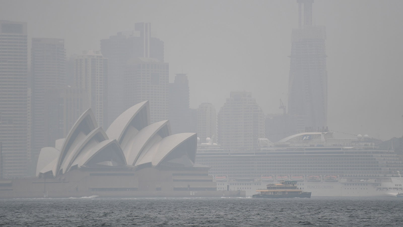Traurige Bilanz: Hunderte starben an Rauch von australischen Buschfeuern