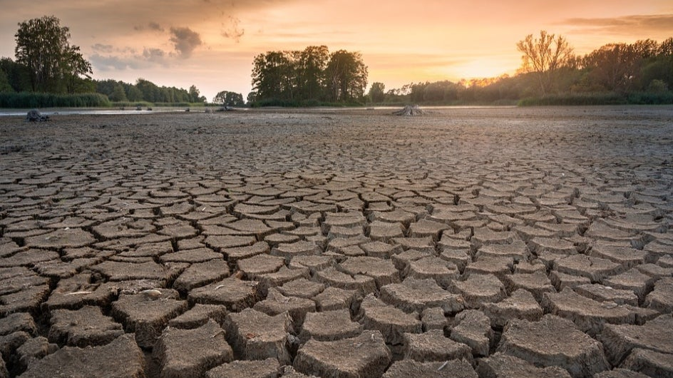 India Leads Fight Against Desertification, Set to Host UN Conference