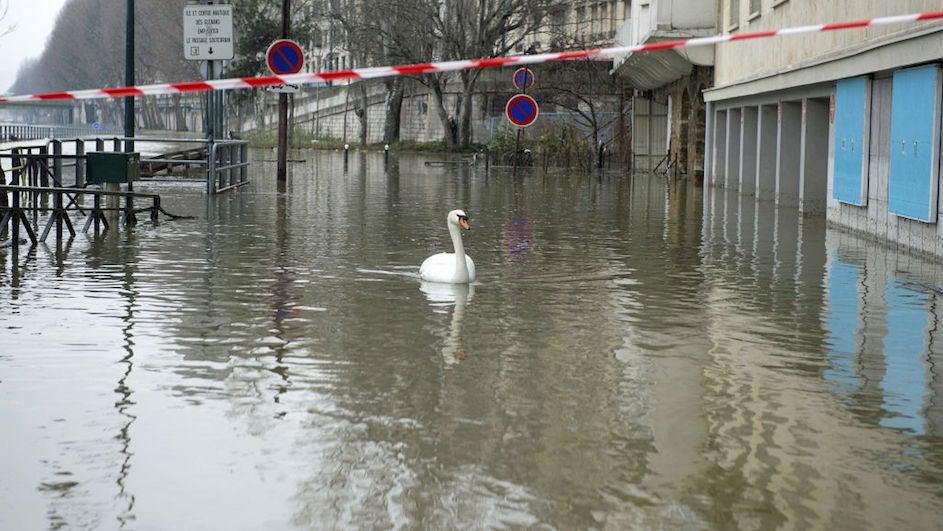 París, todavía bajo los efectos del Sena