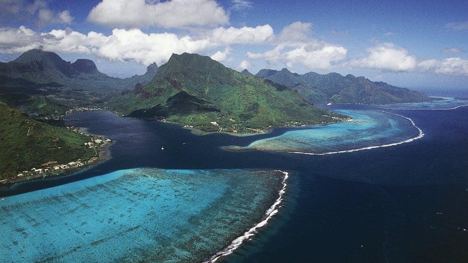 38 arrecifes de coral sobreviven a las amenazas