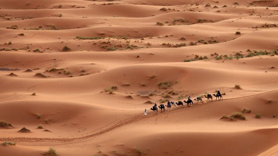 La energía limpia pintaría el Sáhara de verde