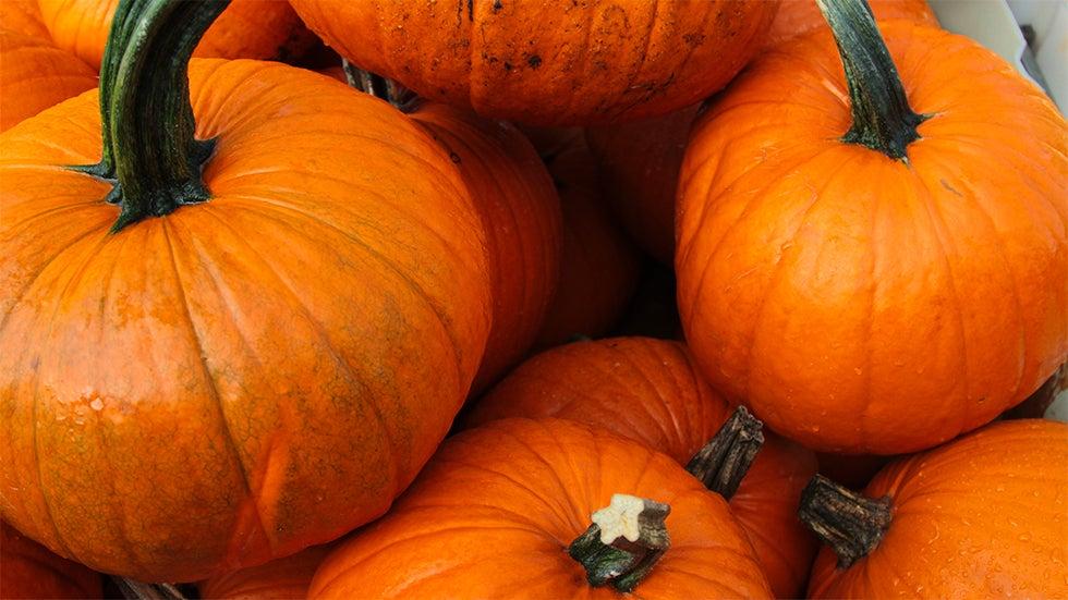 Fall Brings Forth the Great Pumpkin Debate