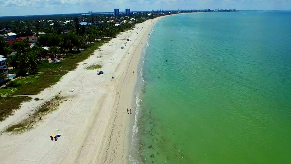 toxic algae in florida causing illnesses the weather channel