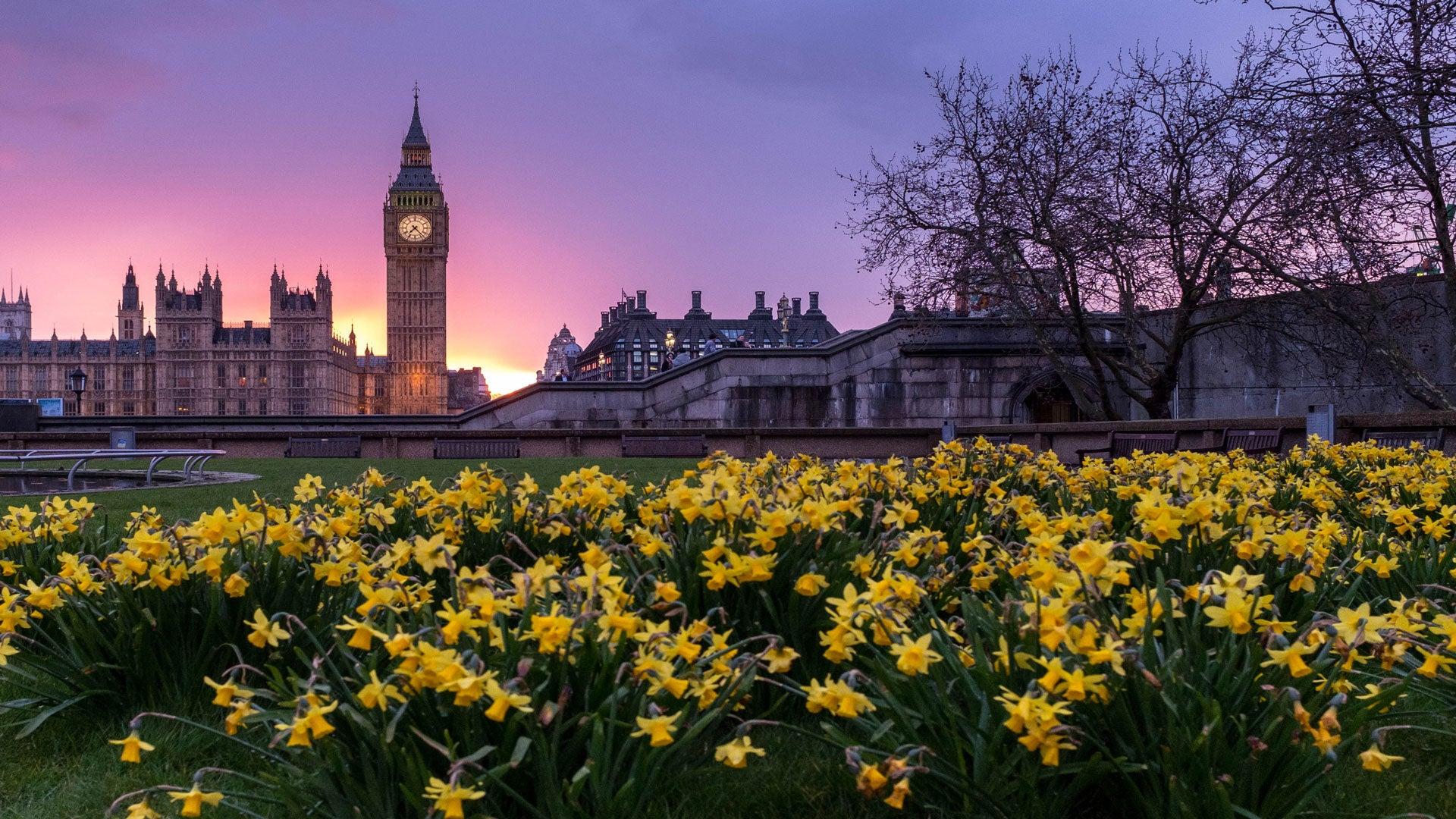 10 activités originales pour visiter Londres en famille