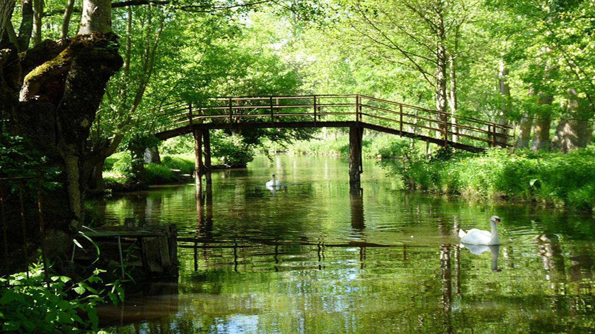 Les plus beaux lieux du Marais poitevin