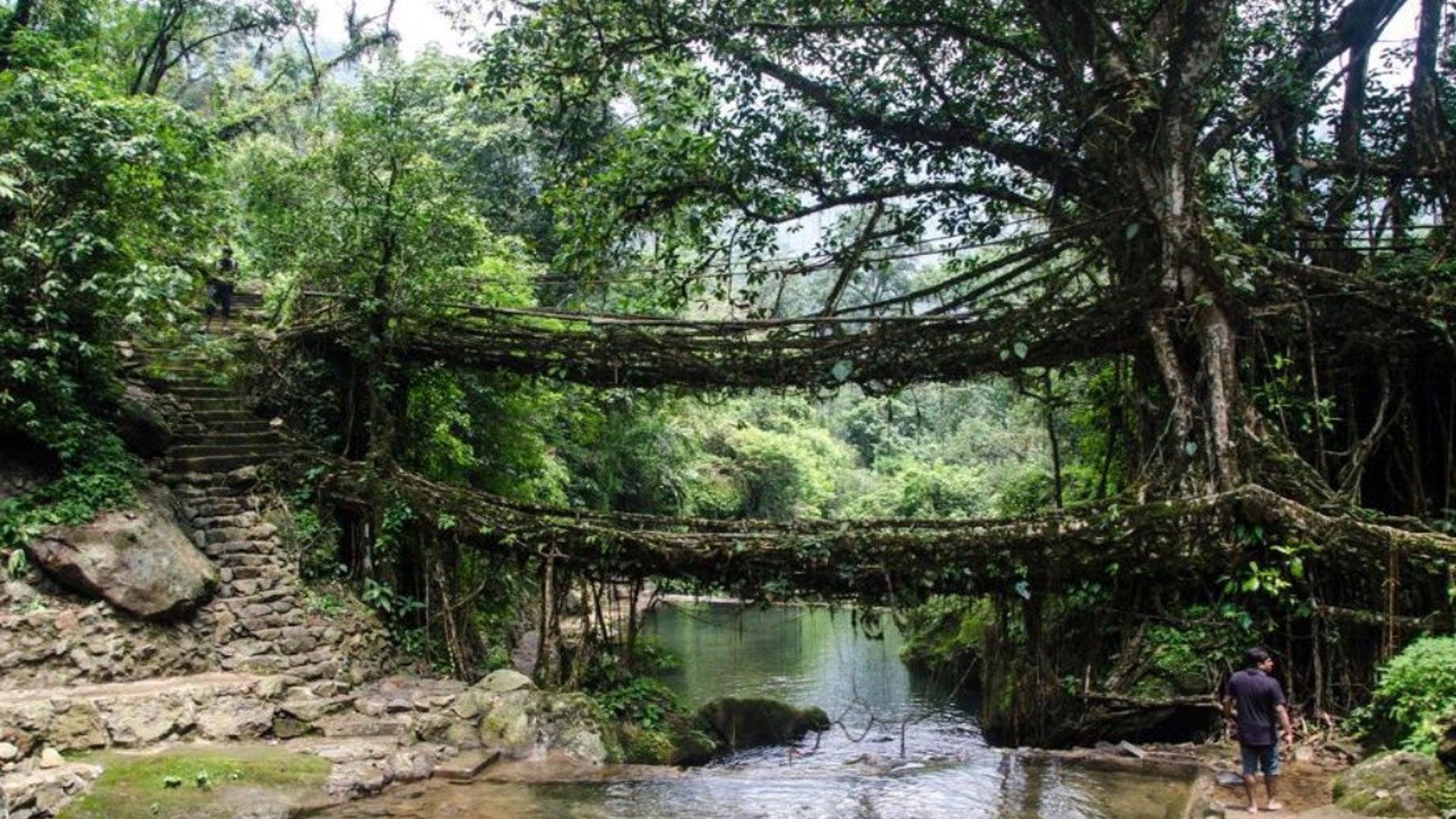 PHOTOS Les ponts les plus étonnants de la planète