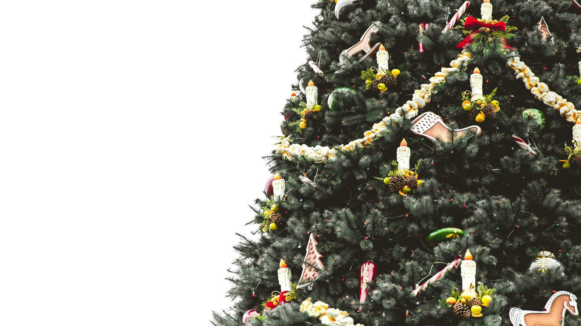 PHOTOS Les plus beaux sapins de Noël à travers le monde