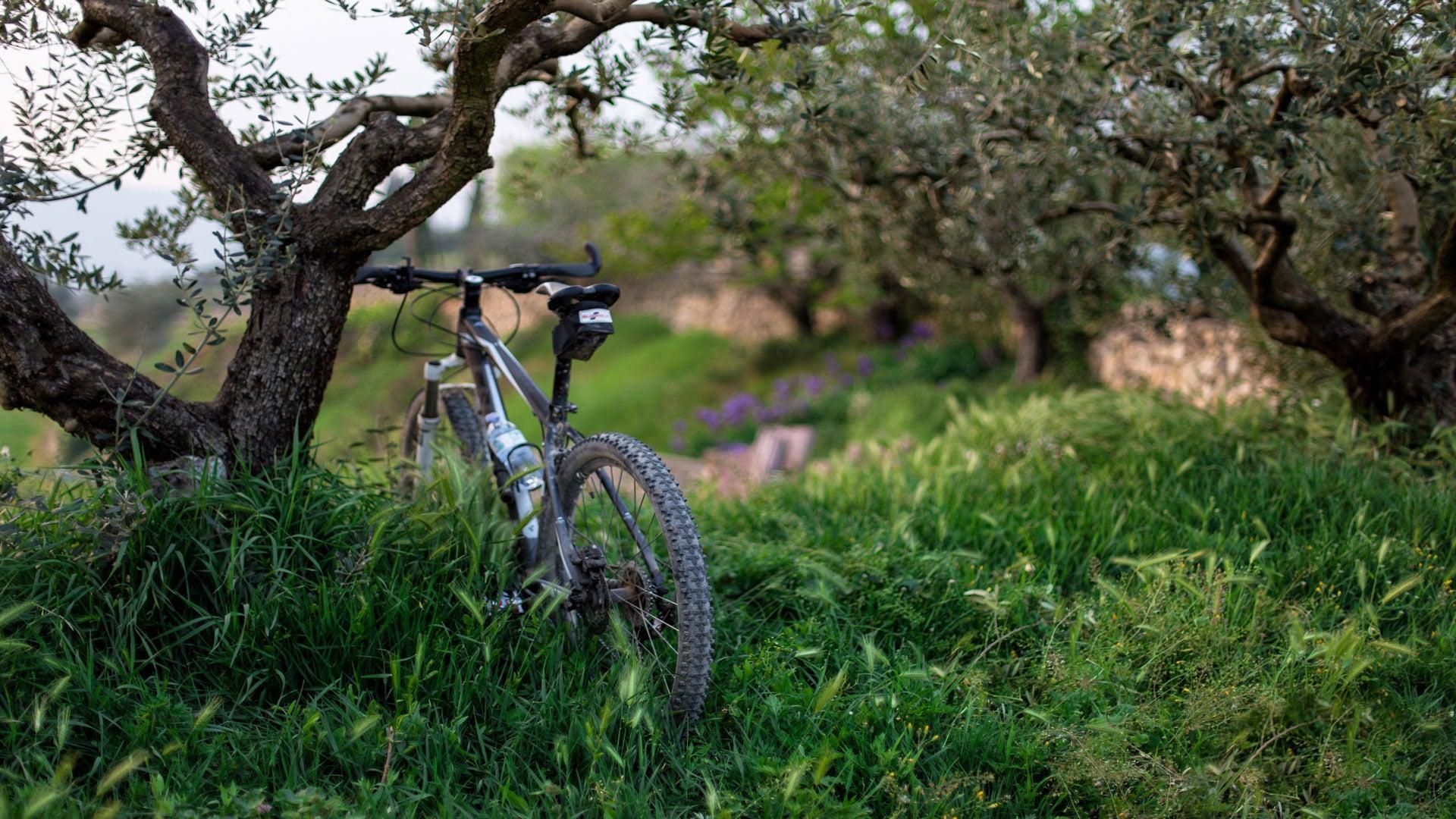 Trois idées de balades à vélo pour découvrir les régions françaises