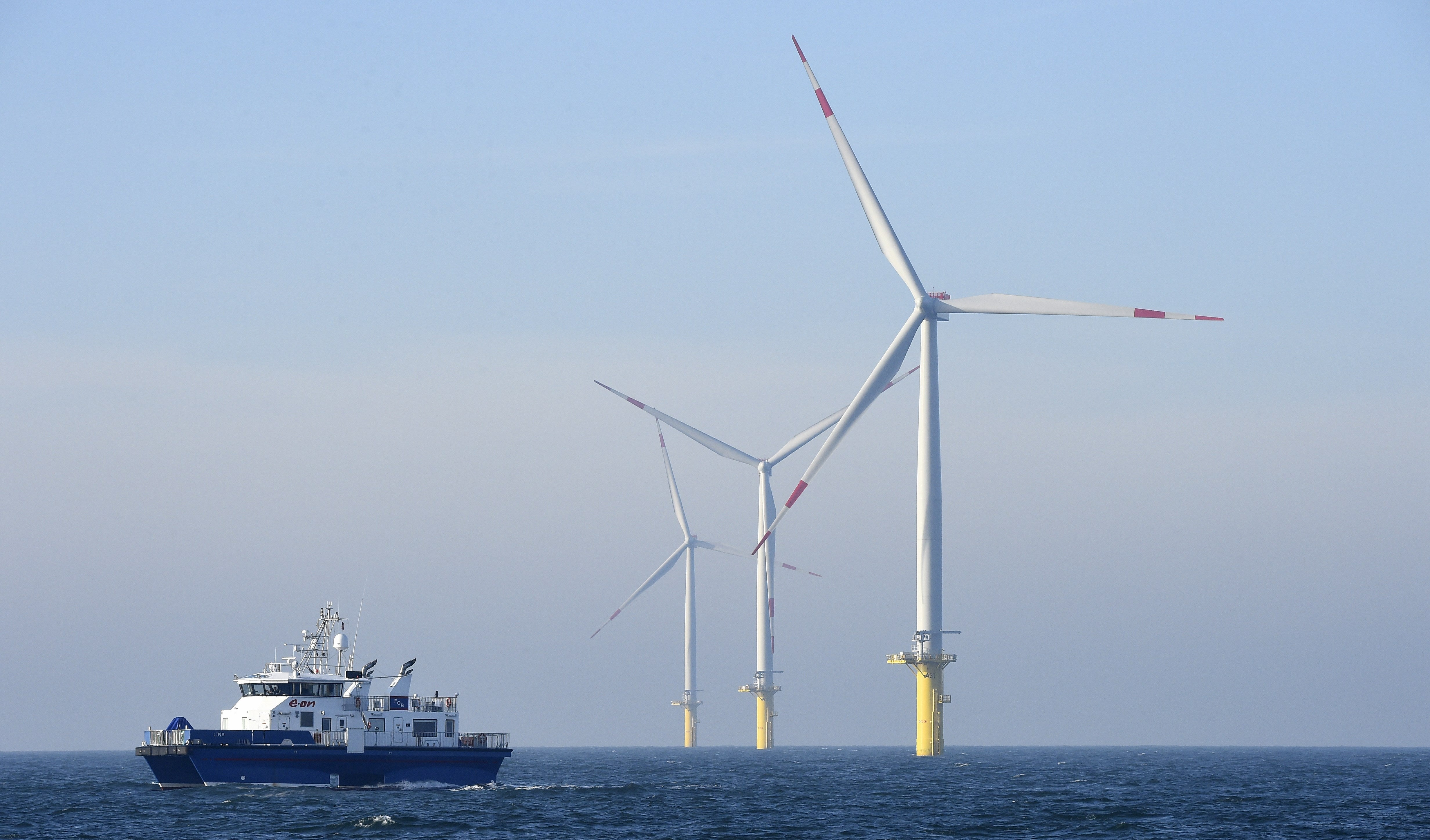 What Do Offshore Wind Farms Mean For The Oceans?