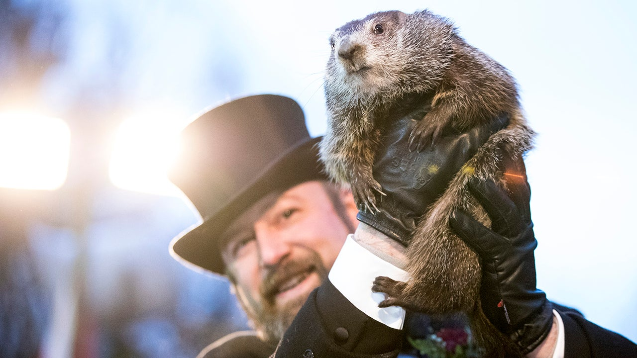 Groundhog Day: How One of America's Weirdest Traditions Came to Be (PHOTOS)