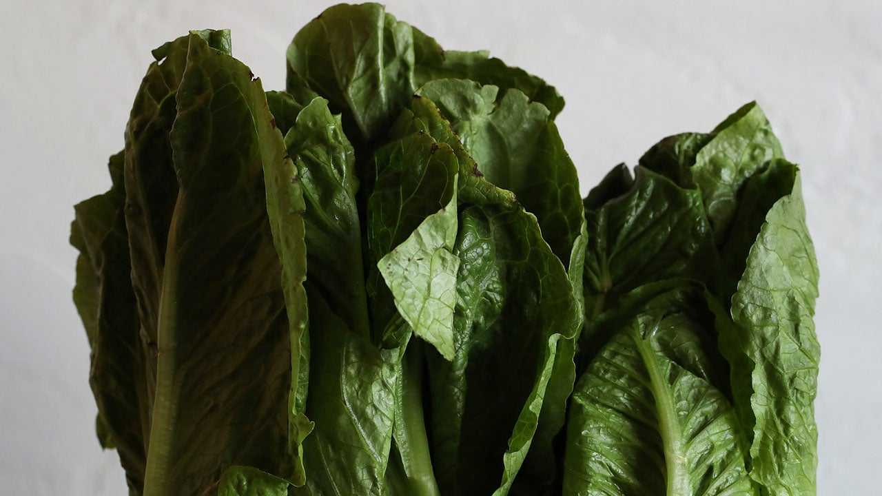 Throw Out All Romaine Lettuce Ahead of Thanksgiving Holiday, CDC Says