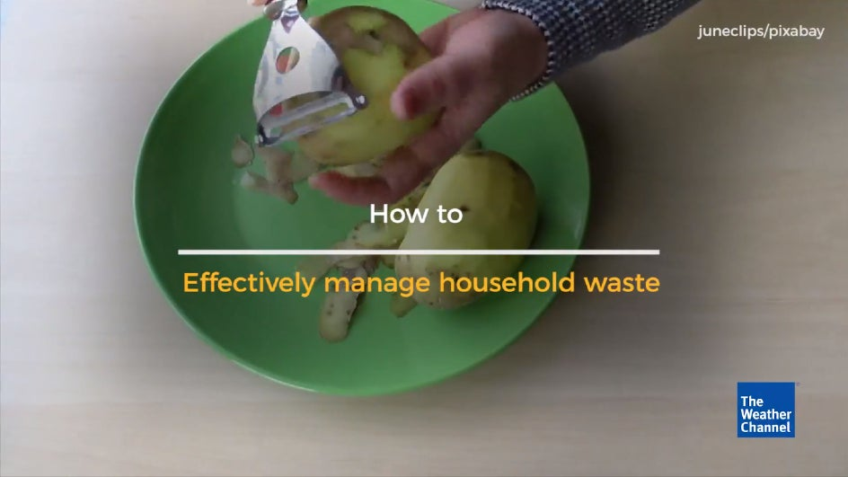 How To Effectively Manage Household Waste