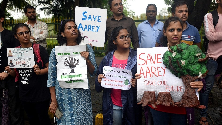 No Trees to Be Felled in Aarey Till Sept 30: Bombay HC