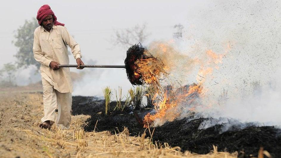 Rains Dampen Drive Against Stubble Burning; Air Pollution Could Rise