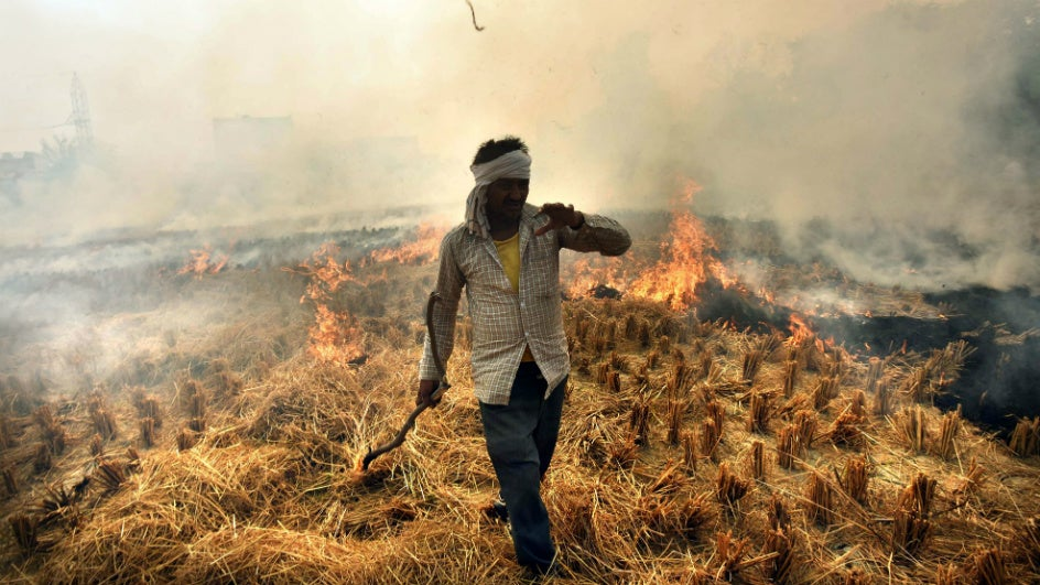 Eco-friendly Farmers Refuse to Burn Crop; Plough the Stubble Back