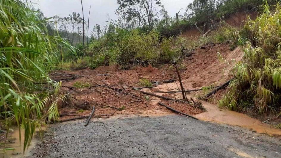 Heavy Rain Triggers Landslide in Darjeeling District; Damages Roads