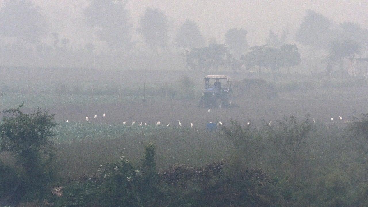 Air Quality Falls to 'Very Poor' in Uttar Pradesh's Meerut