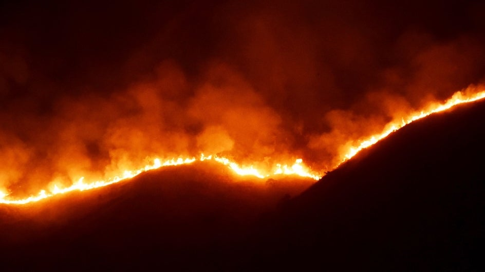 Fact Check: Experts Say Uttarakhand Forest Fires at Record Low as Cries to #SaveTheHimalayas Trend