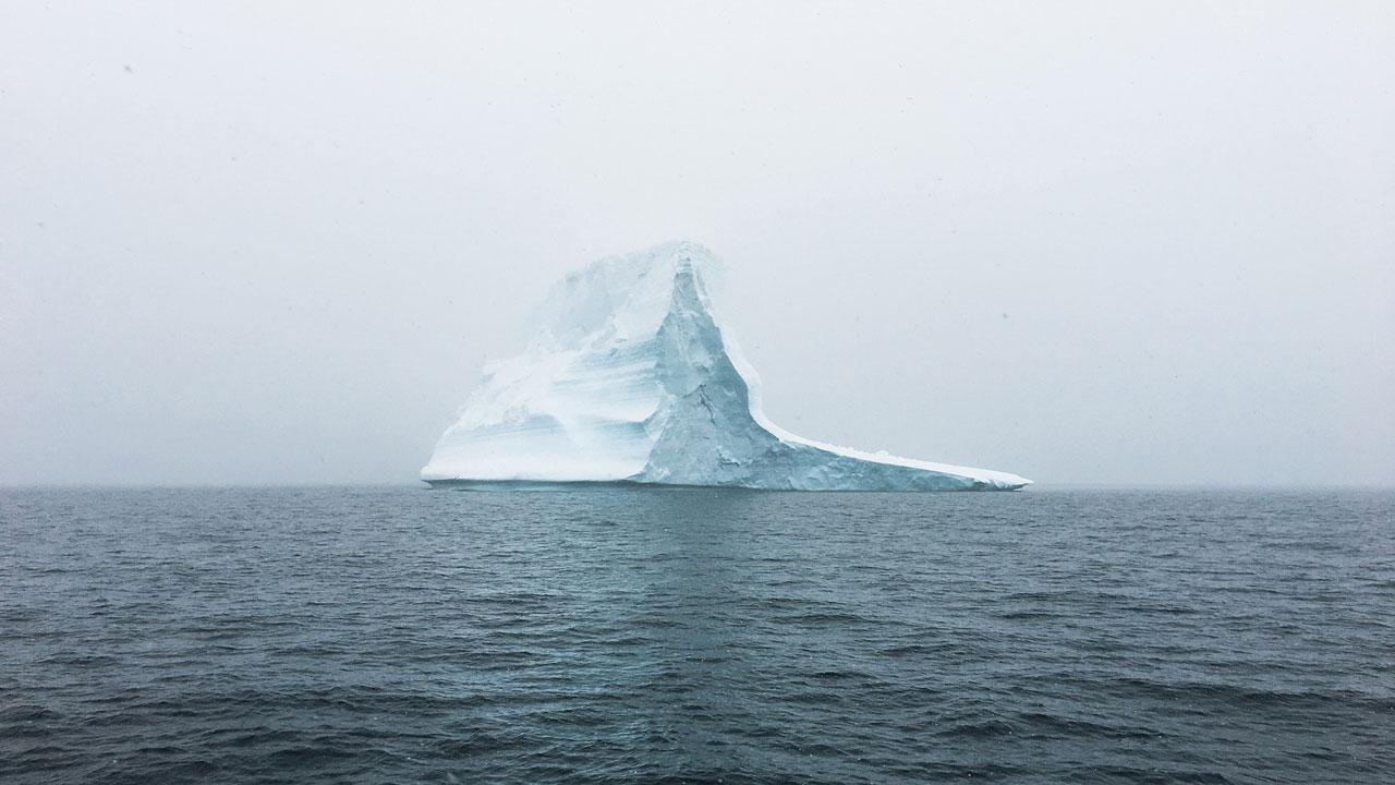 The Great Sea Ice Slowdown of 2016