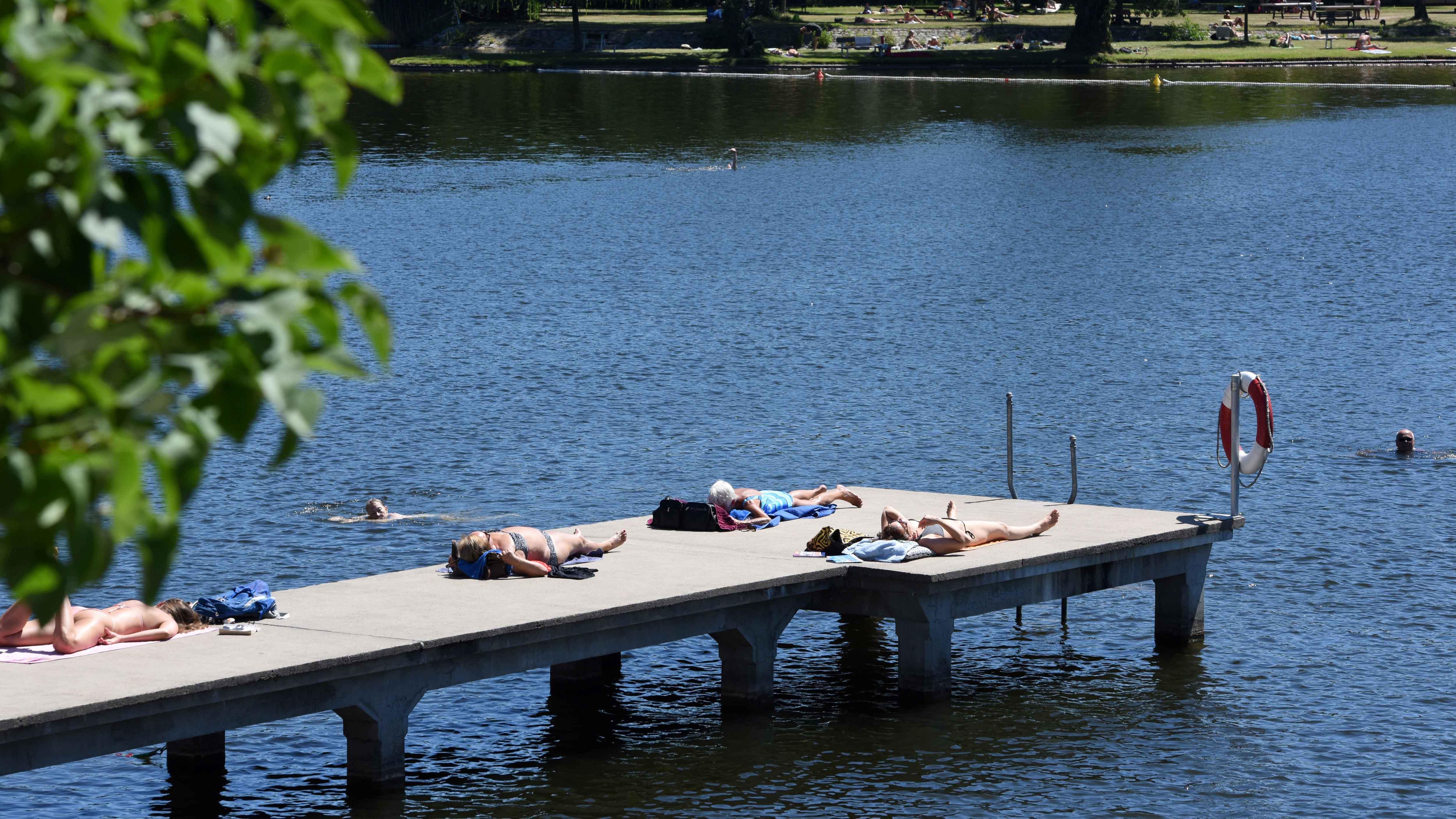 Gesundheitsgefahr: Parasiten und giftige Blaualgen verunreinigen Seen