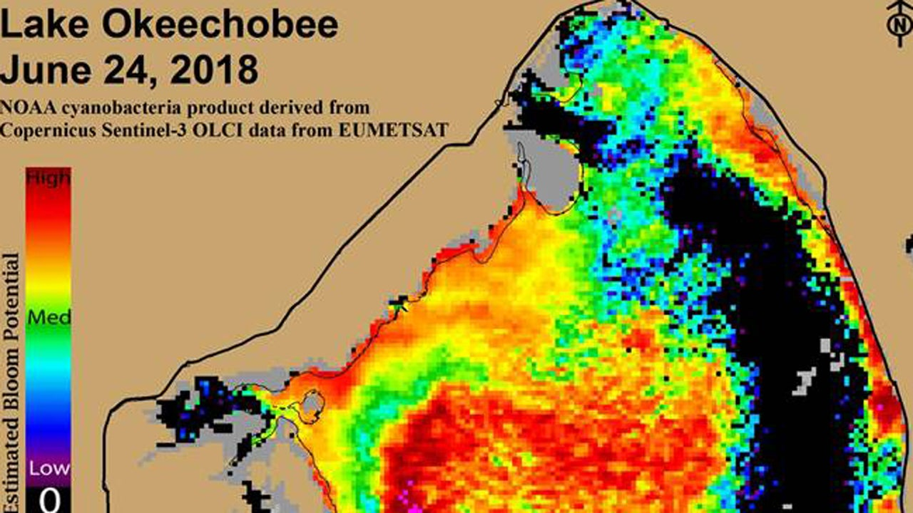 new image shows lake okeechobee toxic algae bloom has