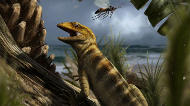 Discovery of 240-Million-Year-Old 'Mother of All Lizards' Changes What Scientists Knew About Reptiles' Evolution