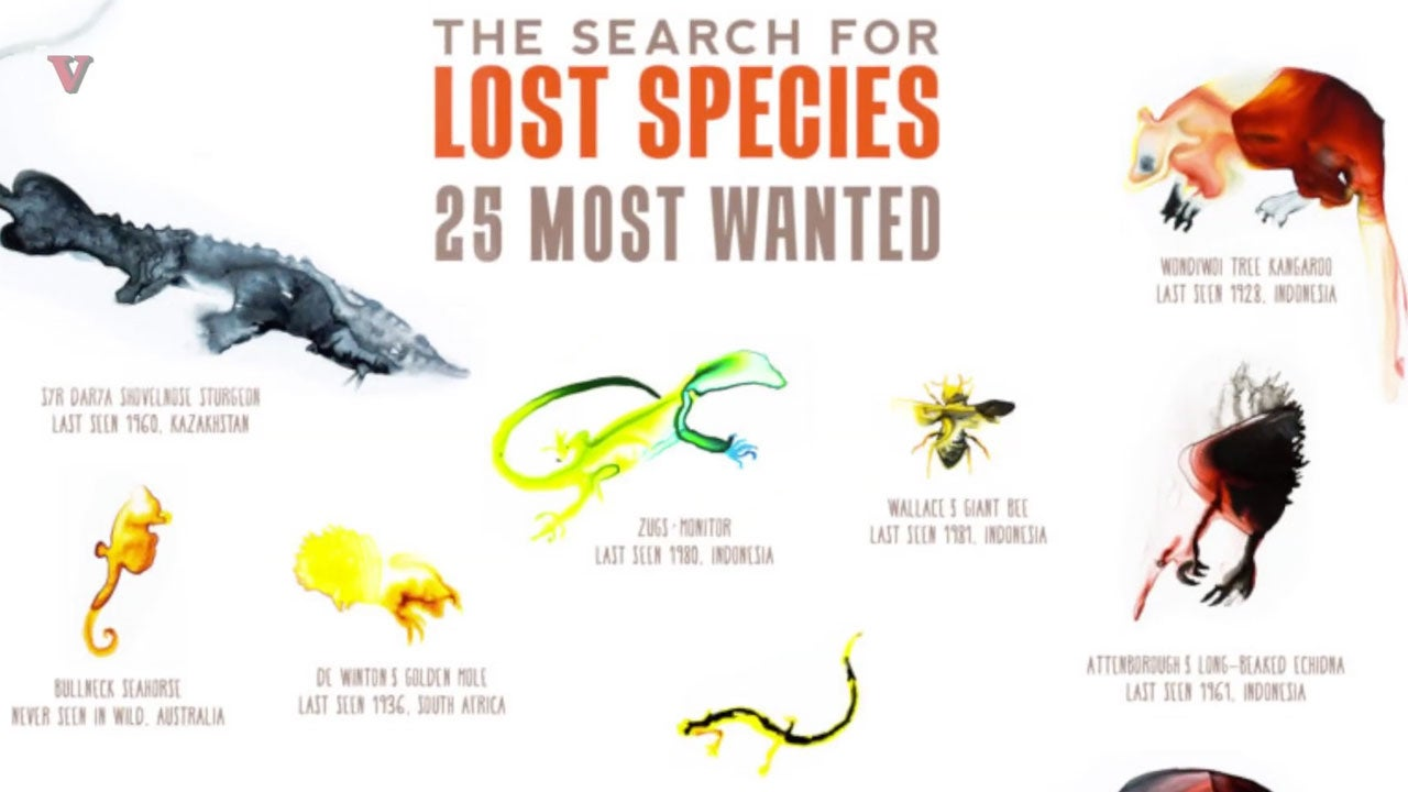 scientists launch global hunt for 25  u0026 39 most wanted u0026 39  missing