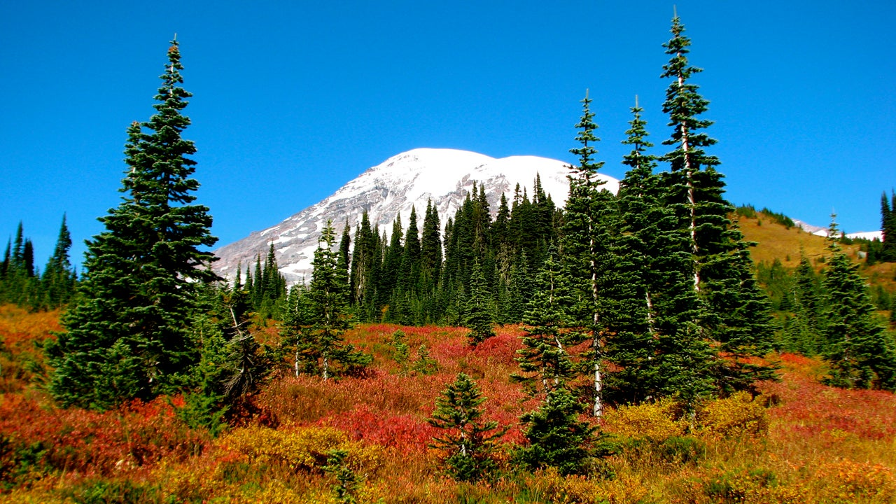 10 Best National Parks to Visit in Fall