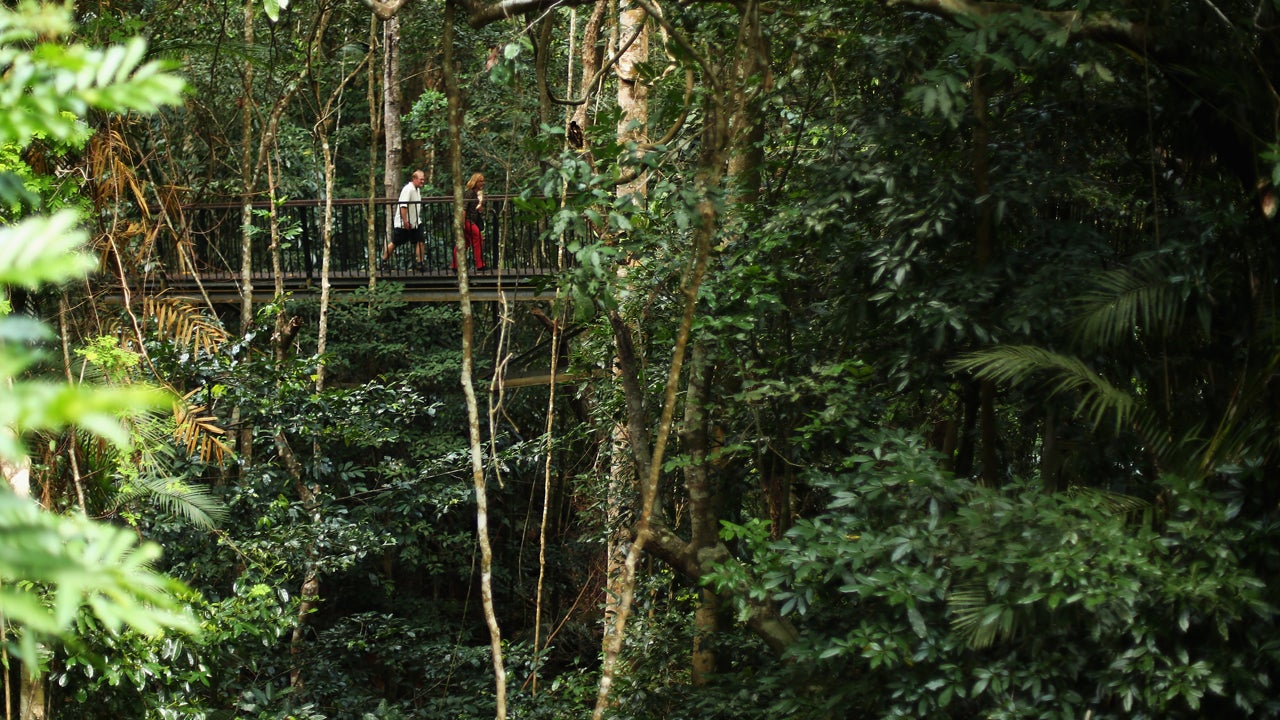 15 Amazing Rainforests of the World (PHOTOS) | The Weather Channel